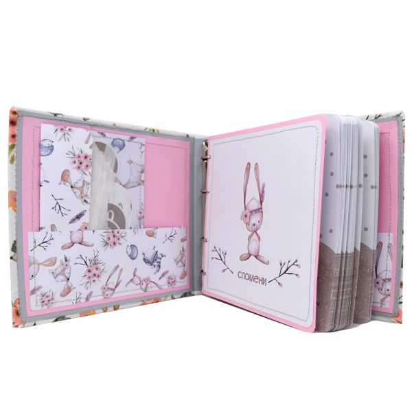 бебешки дневник момиче